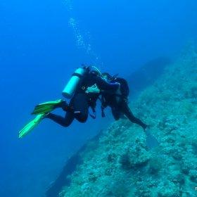 Red Sea - safari wrakowe z Moby Dickiem w obiektywie MAGDY