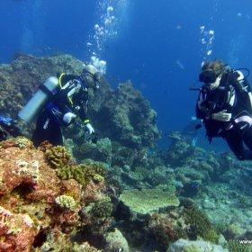 Malediwy nurkowy raj_7