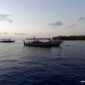Malediwy nurkowy raj_8