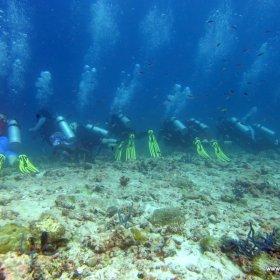 Malediwy nurkowy raj_9